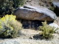 Embudo Canyon 101399 005