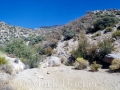 Embudo Canyon 101399 006