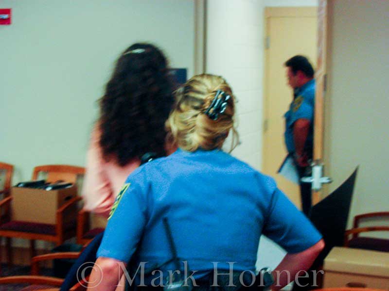 Linda Henning trial 100102 13
